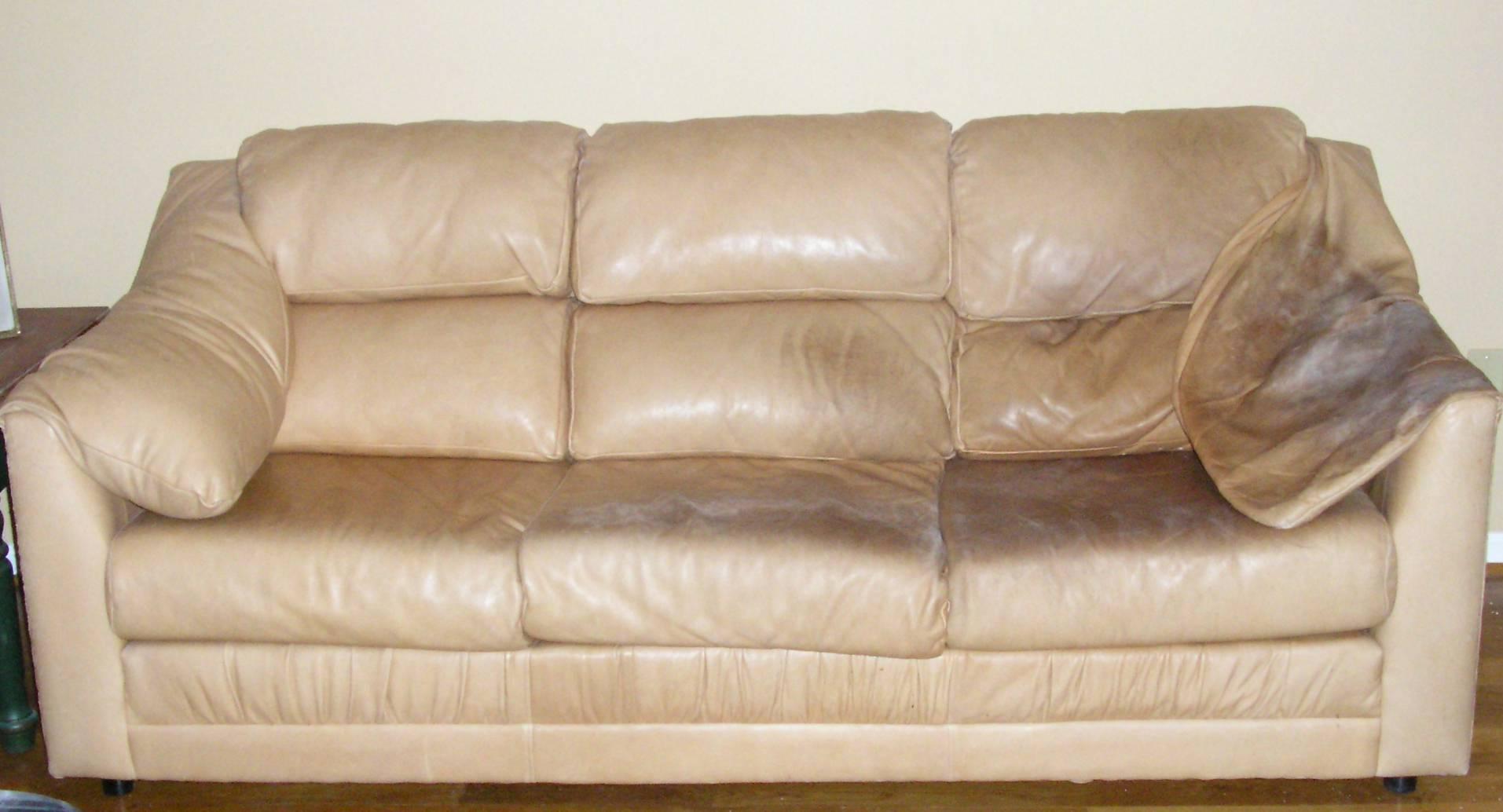 Pigmented Micro Or Semi Aniline Wax Pull Up Sofa Body