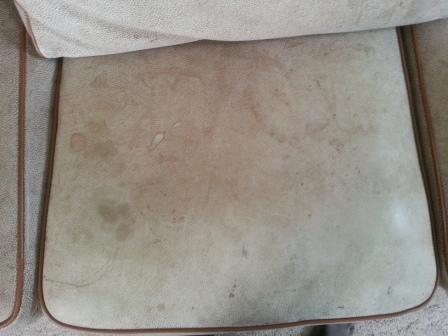 Name:  body oil, food and drink stains on sofa seat.jpg
