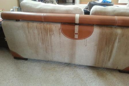Name:  back of sofa, dripping stain from special need child humping chair.jpg Views: 1960 Size:  18.2 KB